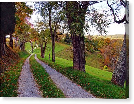 The Long Road In Autumn Canvas Print