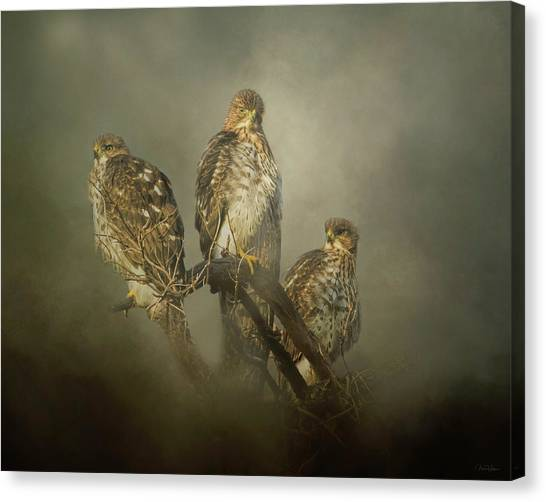 The Lookouts Canvas Print