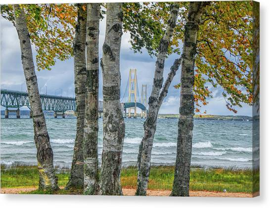 The Mackinaw Bridge By The Straits Of Mackinac In Autumn With Birch Trees Canvas Print