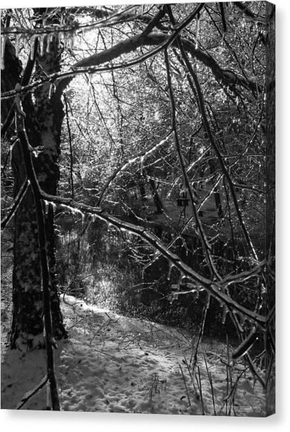 The Magic Pond Canvas Print by Garth Glazier