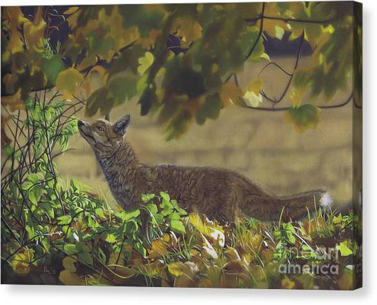 The Fantastic Mr Fox Canvas Print
