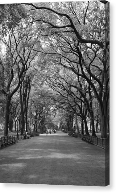 The Mall In Central Park And Poets Walk Canvas Print
