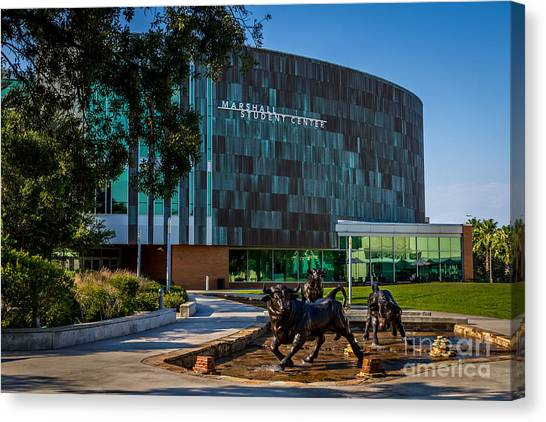 University Of South Florida Canvas Print - The Marshall Center At Usf  by Karl Greeson