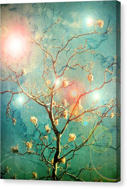 The Memory Of Dreams Canvas Print
