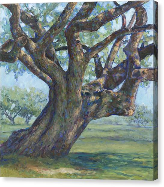 The Mighty Oak Canvas Print