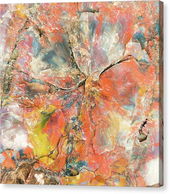 Petrified Forest Canvas Print - The Mineral Tree by Joseph Smith
