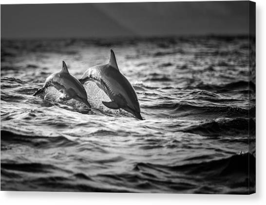Swim Canvas Print - The Mother And The Baby by Gunarto Song