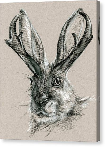 The Mythical Jackalope Canvas Print