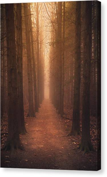 Ohio Valley Canvas Print - The Narrow Path by Rob Blair