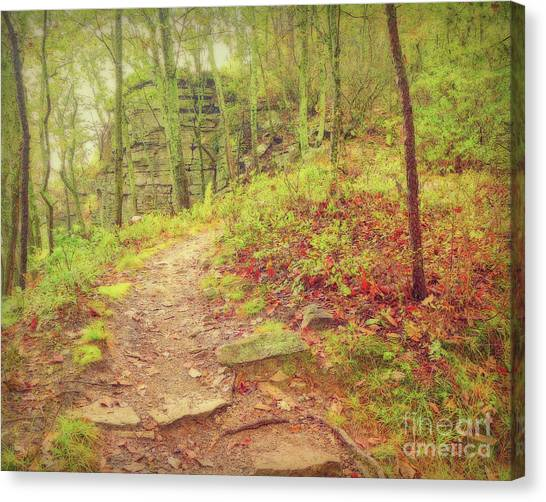 The Narrow Way Canvas Print