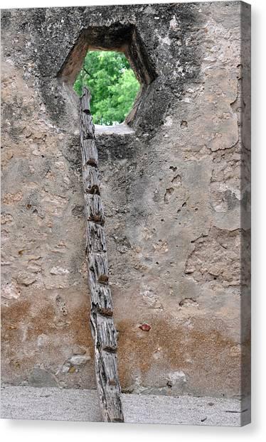 The Narrow Way Canvas Print by Teresa Blanton