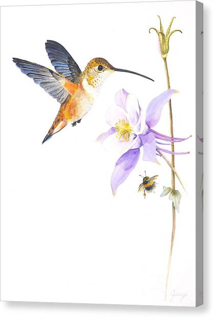 The Nectar Hunt Canvas Print by Jany Schindler