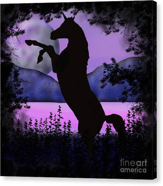 The Night Of The Unicorn Canvas Print