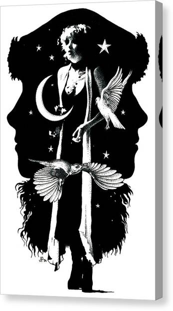 Stevie Nicks Canvas Print - The Nightbird by Johanna Pieterman
