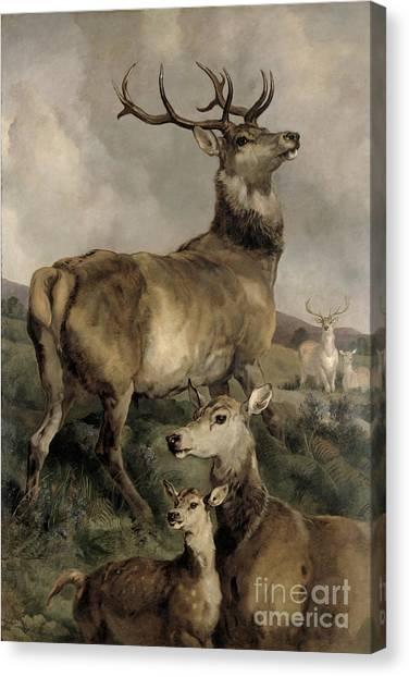 Landseer Canvas Print - The Noble Beast by Sir Edwin Landseer