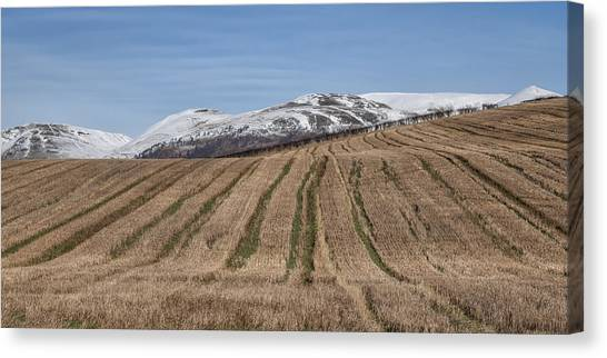 The Ochil Hills In Clackmannanshire Canvas Print