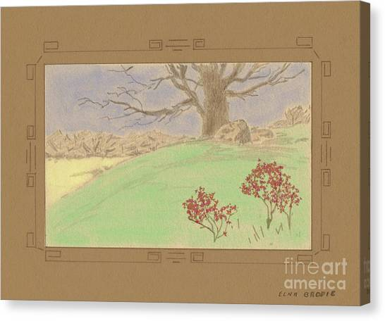 The Old Gully Tree Canvas Print