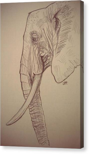 Canvas Print featuring the drawing The Old Leader by Jennifer Hotai