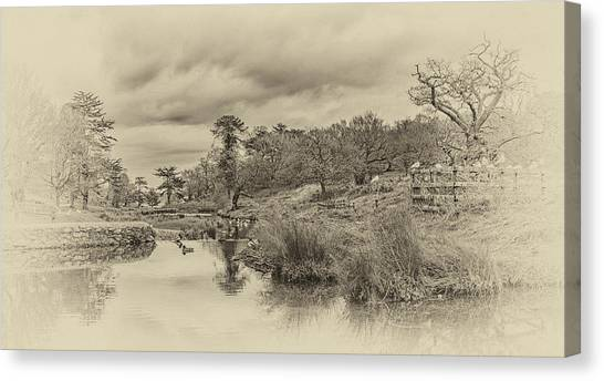 Canvas Print featuring the photograph The Old Pond by Nick Bywater