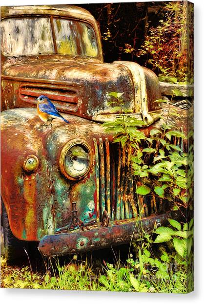 Rusty Truck Canvas Print - The Old Rusty Ford by Tina LeCour