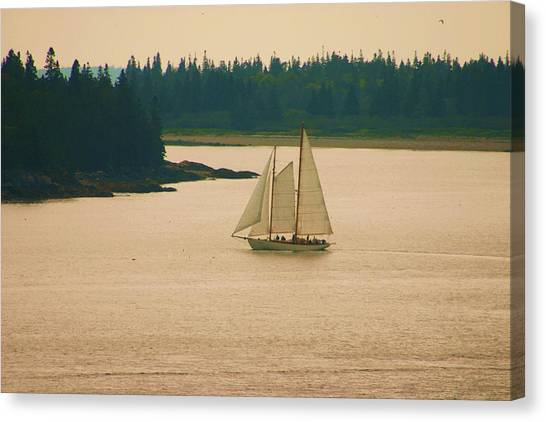 The Old Schooner Canvas Print by Dennis Curry