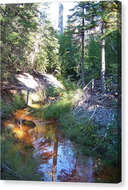 The Orange River Canvas Print