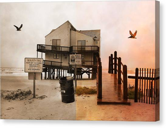 Osprey Canvas Print - The Osprey And The Pelican by Betsy Knapp