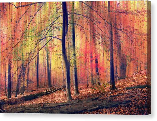 Canvas Print featuring the photograph The Painted Woodland by Jessica Jenney