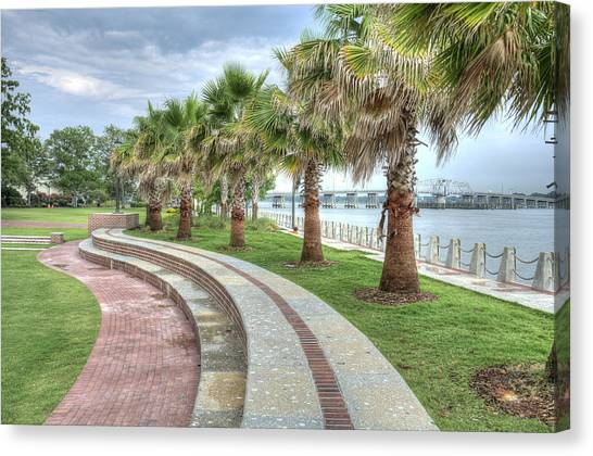 The Palms Of Water Front Park Canvas Print