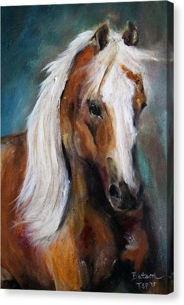 The Palomino I Canvas Print