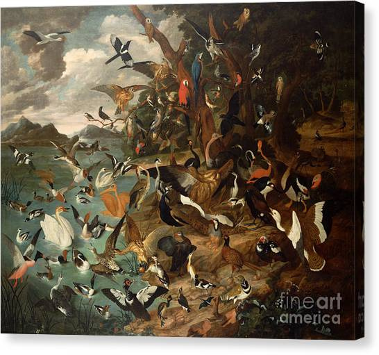 Parliament Canvas Print - The Parliament Of Birds by Carl Wilhelm de Hamilton
