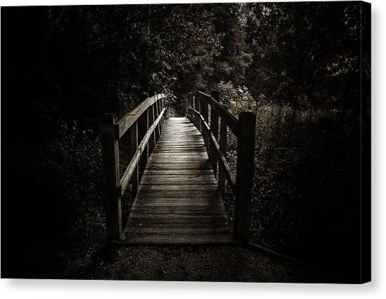 Black Forest Canvas Print - The Path Between Darkness And Light by Scott Norris