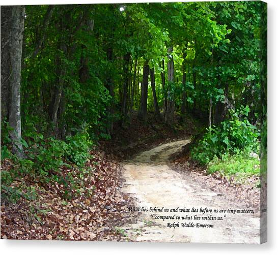 The Path Canvas Print by Ginger Howland