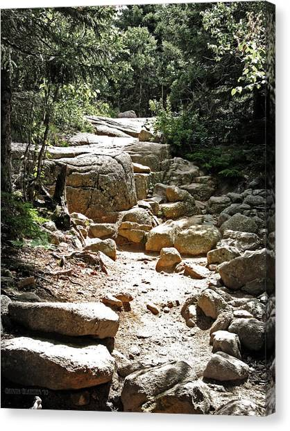 The Path To The Mountain Top Canvas Print by Garth Glazier