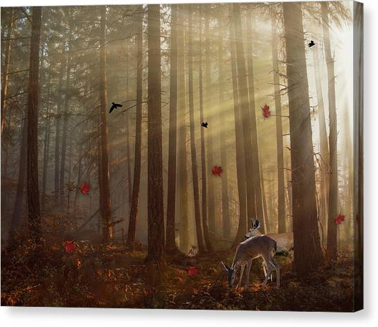 The Peace Of An Autumn Sunset Canvas Print