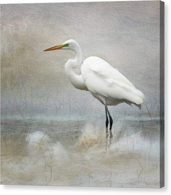 The Peace Of Wild Things Canvas Print