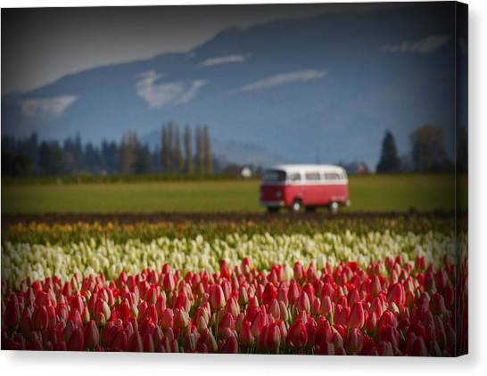 The Perfect Parking Spot Canvas Print by Karla DeCamp