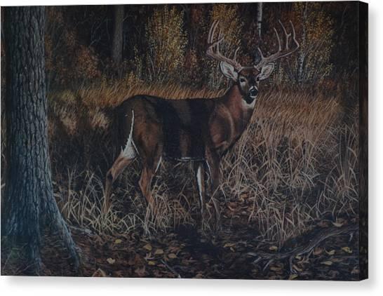 The Phantom Buck Canvas Print