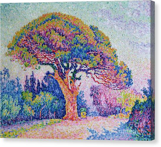 Pointillism Canvas Print - The Pine Tree At Saint Tropez by Paul Signac
