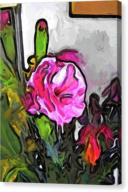 The Pink Flower With The Burgundy Buds Canvas Print