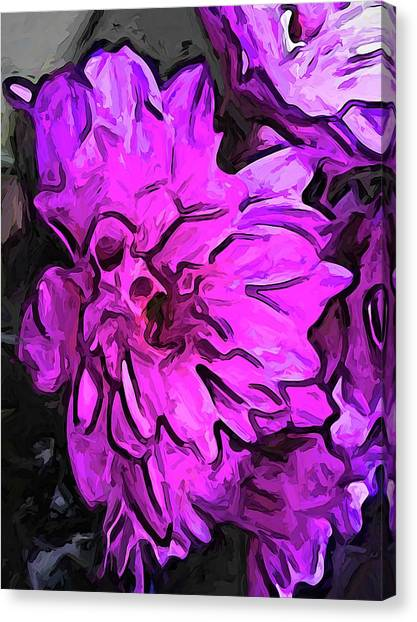 The Pink Flower With The Lavender Edges Canvas Print