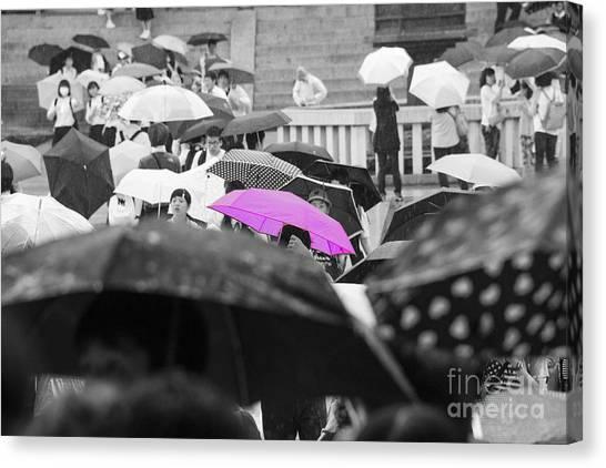The Pink Umbrella Canvas Print