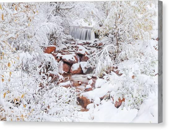 The Poetic Beauty Of Freshly Fallen Snow  Canvas Print