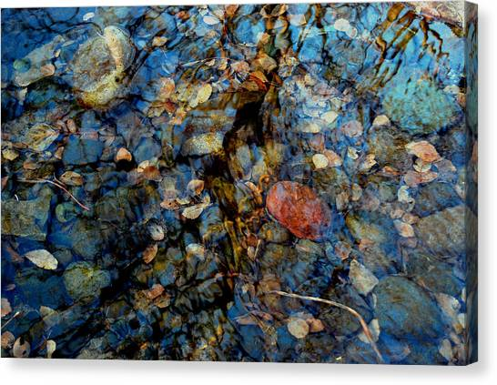 The Pond In Autumn Canvas Print by Marilynne Bull
