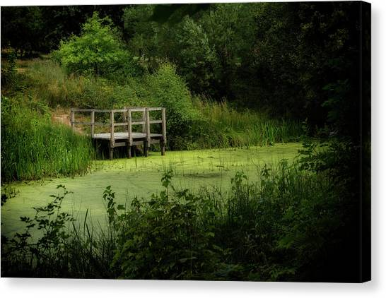 Canvas Print featuring the photograph The Pond by Jeremy Lavender Photography