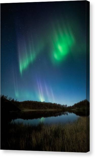 Aurora Borealis Canvas Print - The Pond by Tor-Ivar Naess