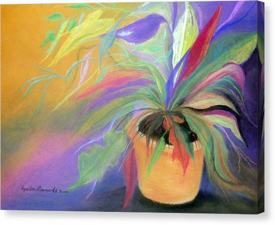 The Purple Bird Canvas Print by Maritza Bermudez