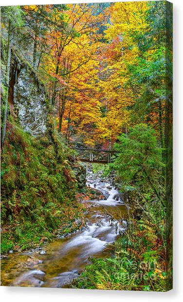Cascades And Waterfalls Canvas Print