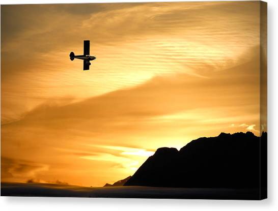 Cessnas Canvas Print - The Reason by Ron Day