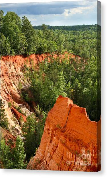 The Red Dirt Of Georgia Canvas Print